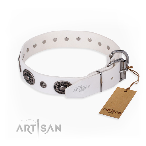 High quality full grain leather dog collar crafted for daily use