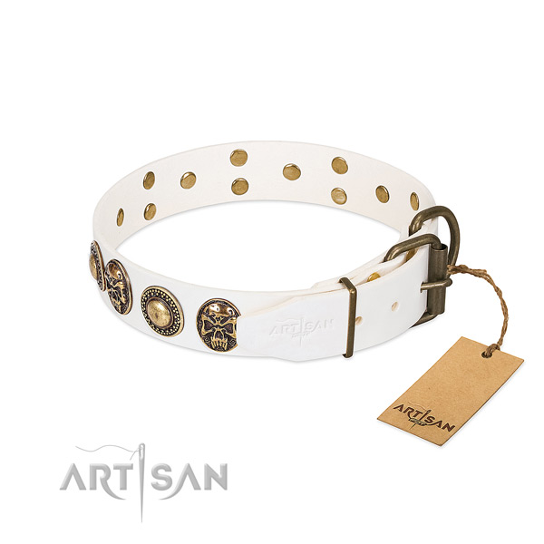 Reliable studs on handy use dog collar