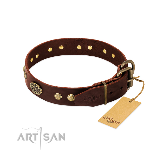 Reliable traditional buckle on Genuine leather dog collar for your doggie