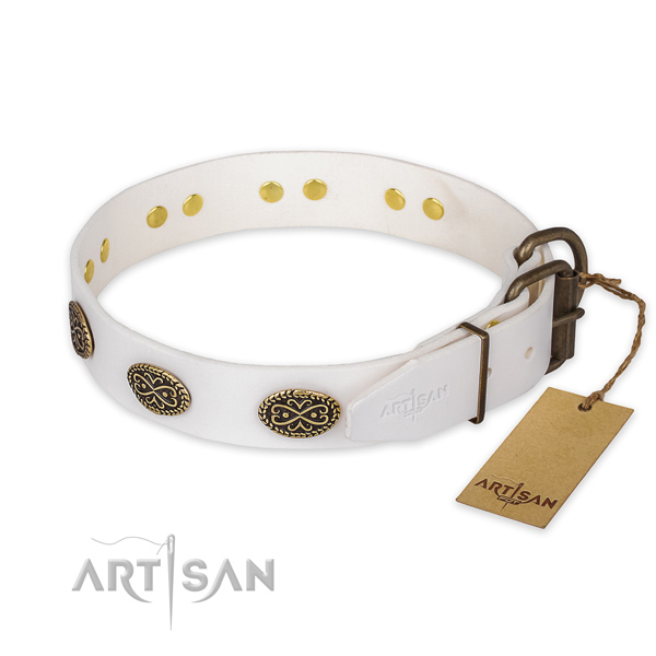 Durable D-ring on leather collar for stylish walking your pet