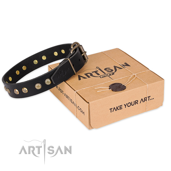 Rust resistant fittings on leather collar for your lovely four-legged friend