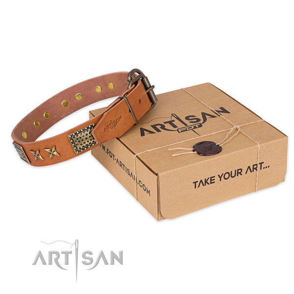 Durable fittings on natural genuine leather collar for your stylish canine