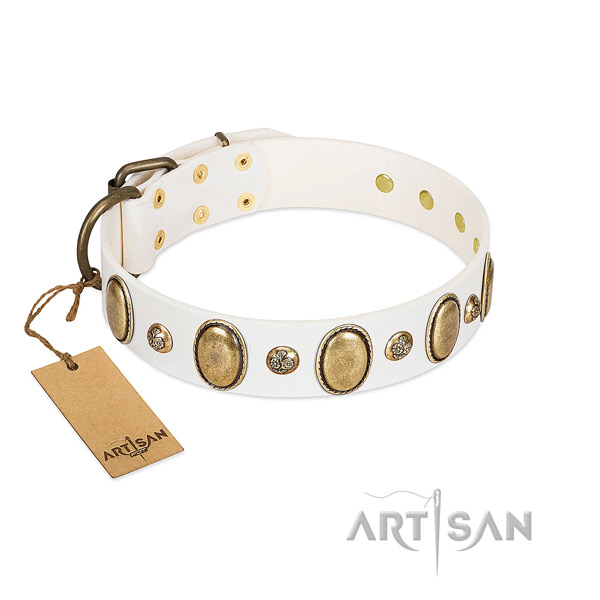 Leather dog collar of gentle to touch material with designer decorations