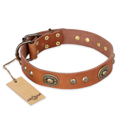 """Stunning Dress"" FDT Artisan Tan Leather German Shepherd Collar with Old Bronze Look Plates and Studs"