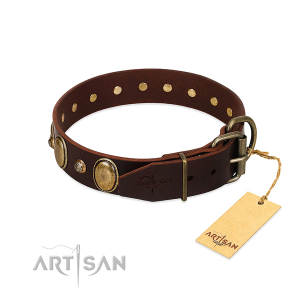 Durable traditional buckle on full grain natural leather collar for basic training your dog