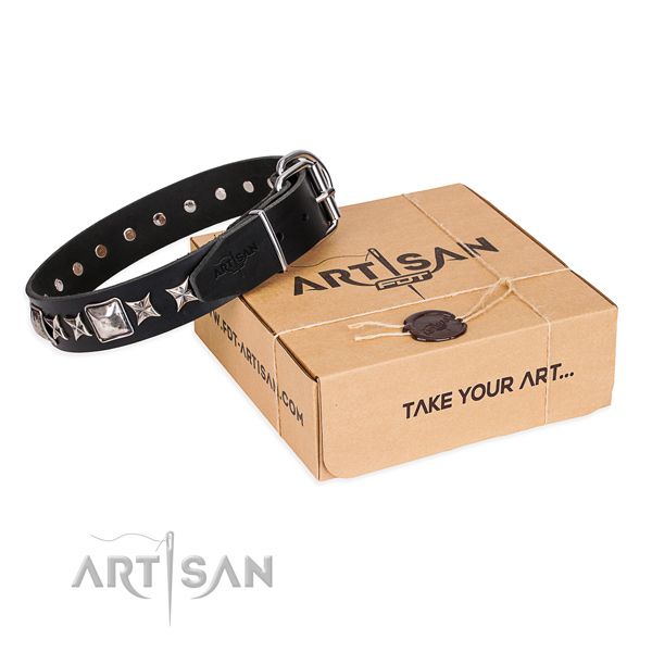 Fancy walking dog collar of high quality full grain natural leather with adornments