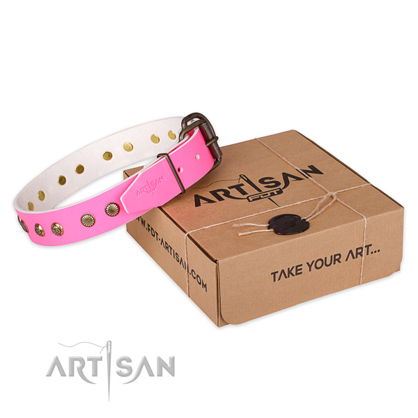 Corrosion proof traditional buckle on full grain leather collar for your beautiful pet