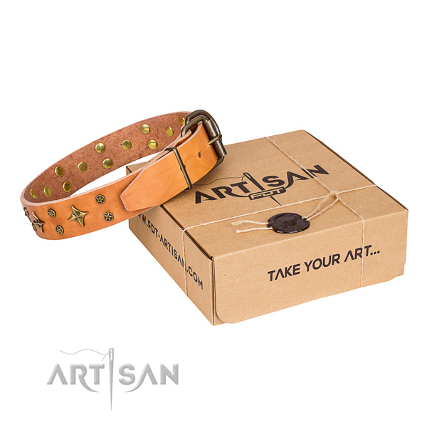 Everyday use dog collar of finest quality full grain natural leather with studs
