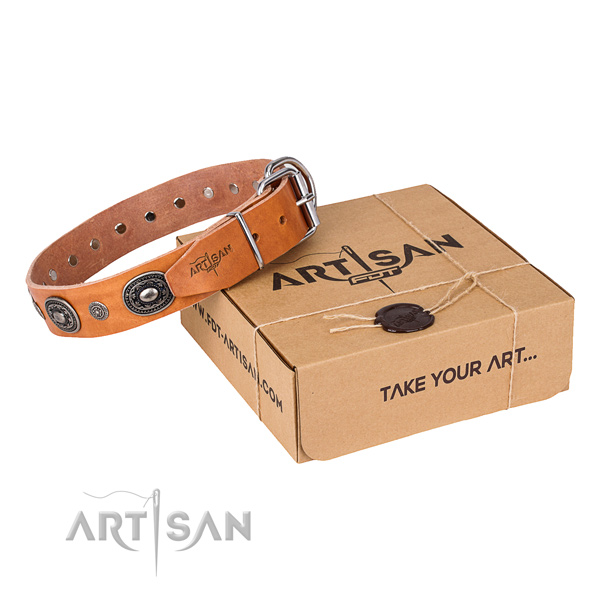Gentle to touch full grain leather dog collar created for everyday walking