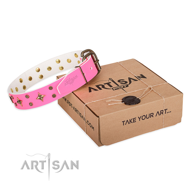 Walking dog collar of reliable full grain leather with studs