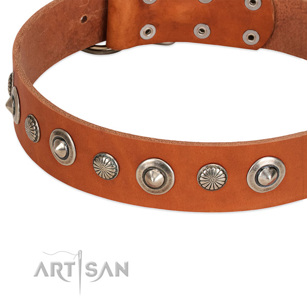 Genuine leather collar with corrosion resistant D-ring for your handsome dog