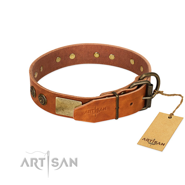 Rust-proof D-ring on genuine leather collar for everyday walking your pet