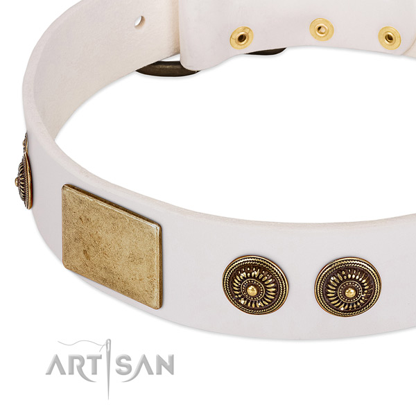 Fashionable dog collar handcrafted for your lovely four-legged friend