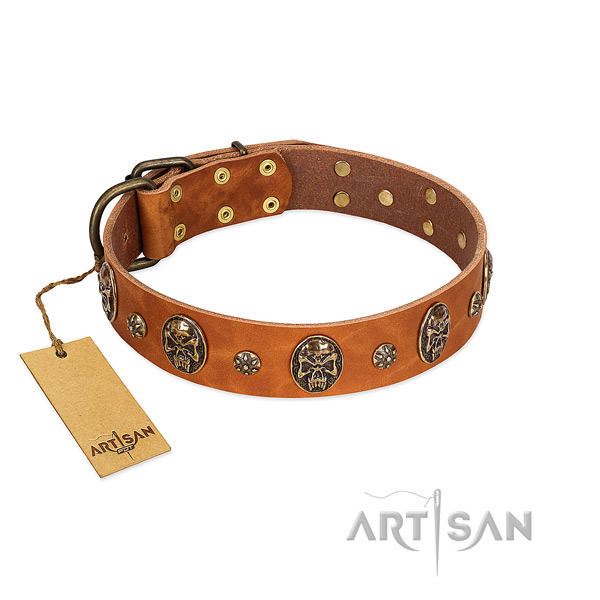Significant full grain genuine leather collar for your canine