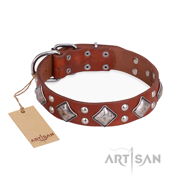 Fancy walking easy adjustable dog collar with reliable traditional buckle
