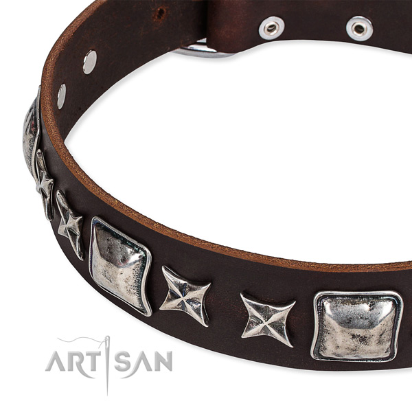 Daily walking embellished dog collar of top notch full grain natural leather