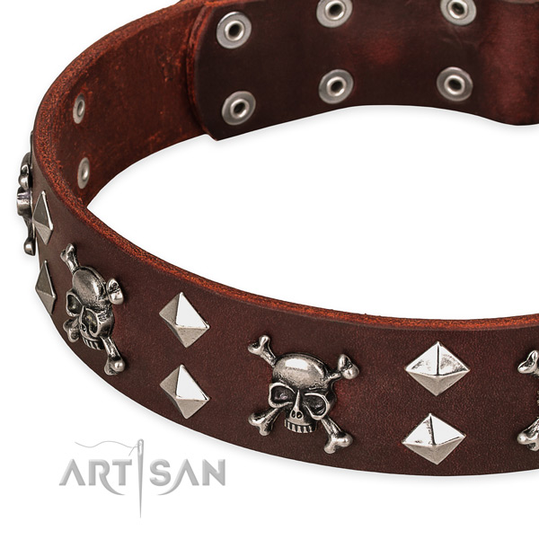 Stylish walking adorned dog collar of top notch leather