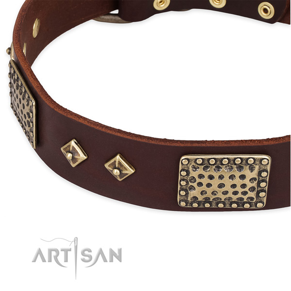 Strong traditional buckle on leather dog collar for your doggie