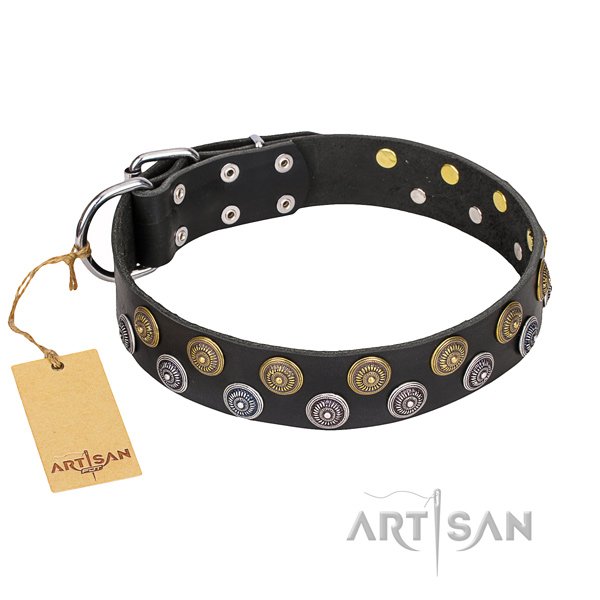 Comfy wearing dog collar of strong genuine leather with embellishments