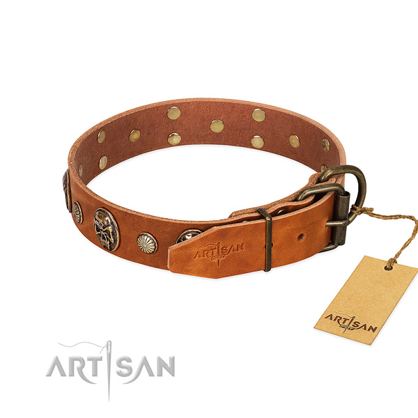 Durable hardware on full grain leather collar for basic training your pet