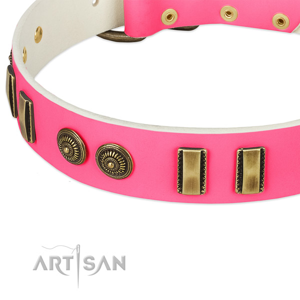 Reliable embellishments on natural leather dog collar for your four-legged friend
