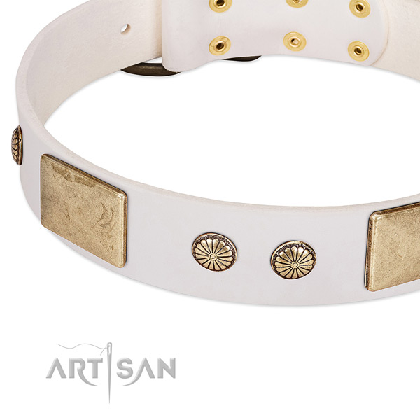 Corrosion proof embellishments on full grain leather dog collar for your dog