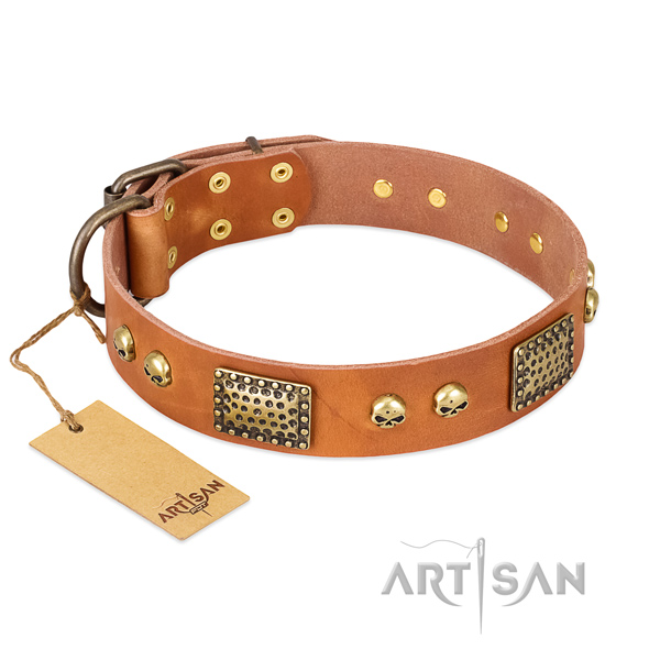 Easy adjustable full grain genuine leather dog collar for everyday walking your canine