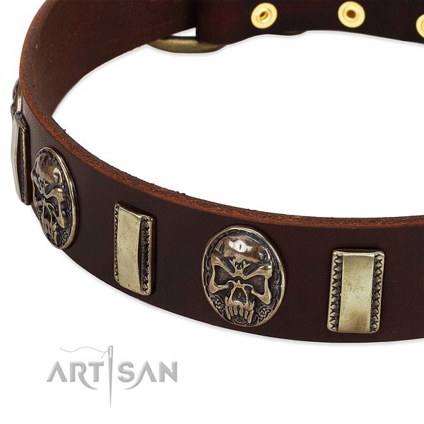 Reliable adornments on full grain genuine leather dog collar for your pet