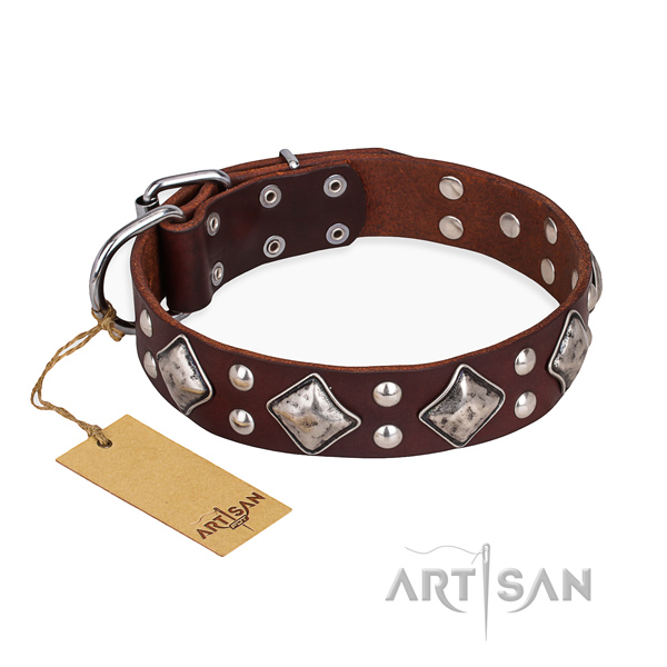 Easy wearing handmade dog collar with durable hardware