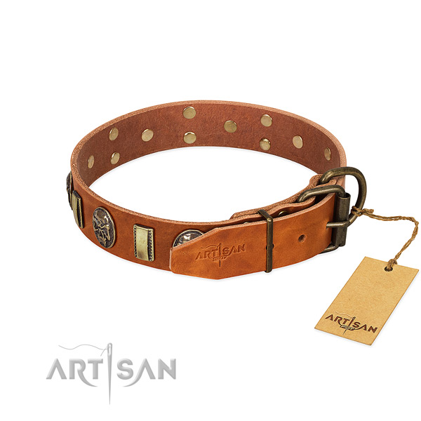 Corrosion proof fittings on leather collar for fancy walking your four-legged friend
