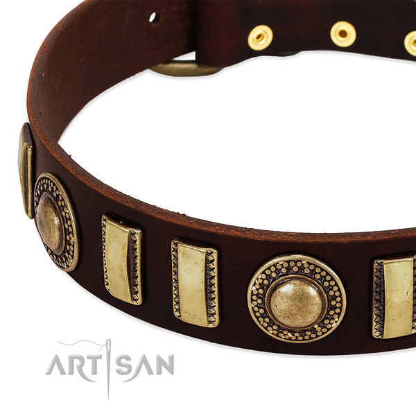 High quality full grain natural leather dog collar with strong traditional buckle