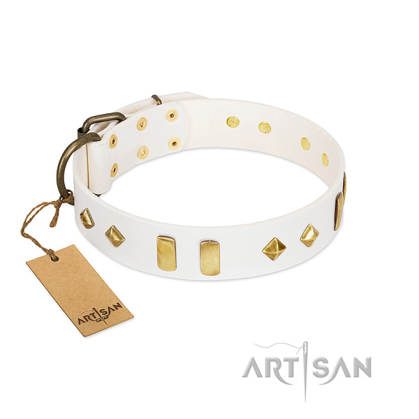 Easy wearing top notch leather dog collar with studs