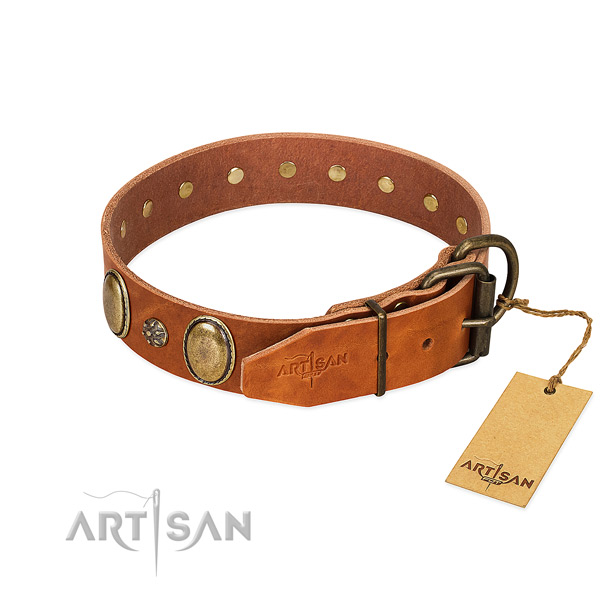 Walking top rate leather dog collar