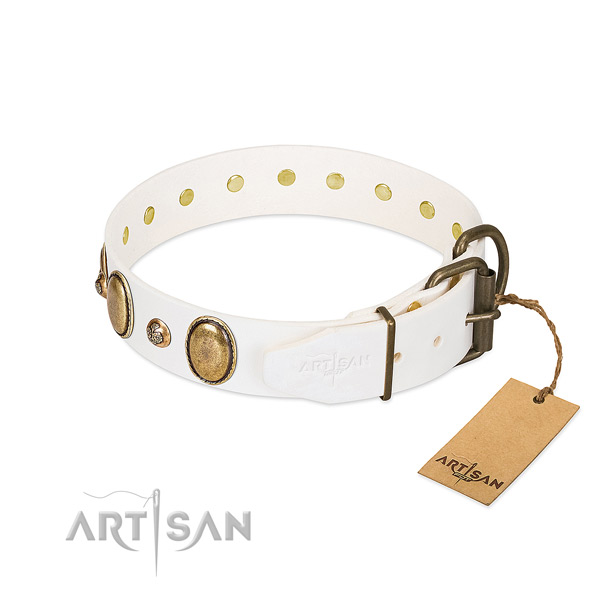 Daily walking full grain leather dog collar