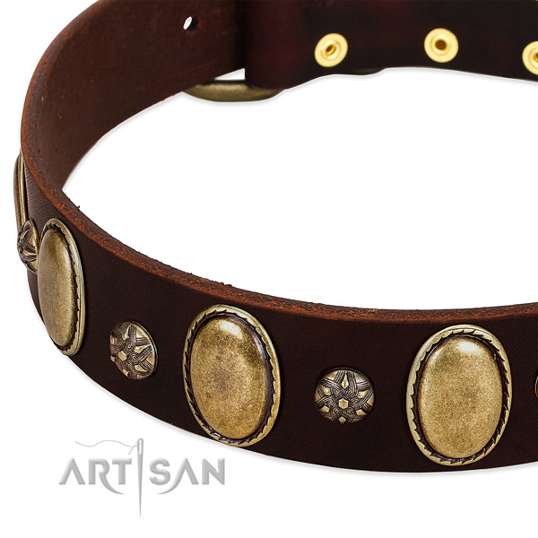 Easy wearing top notch leather dog collar