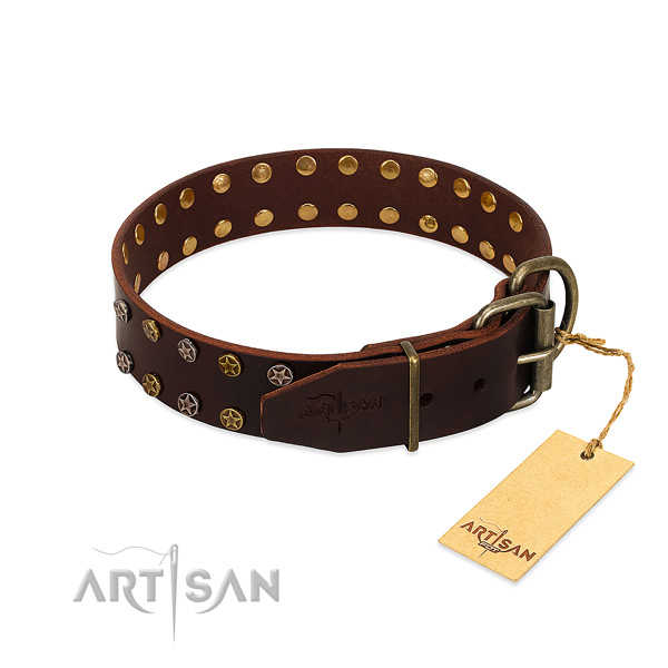 Walking full grain genuine leather dog collar with fashionable adornments