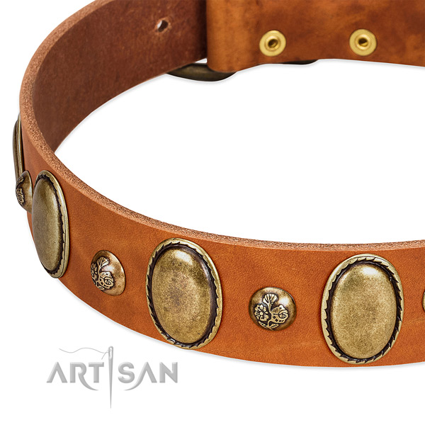 Full grain genuine leather dog collar with unique embellishments