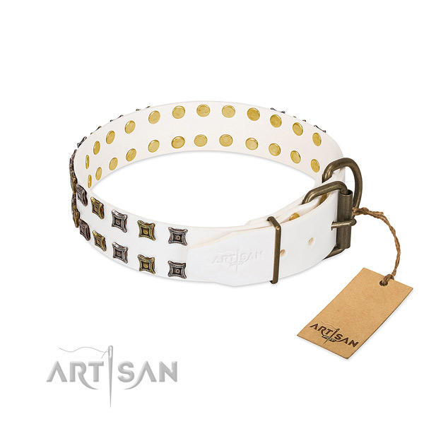 Full grain leather collar with remarkable adornments for your canine