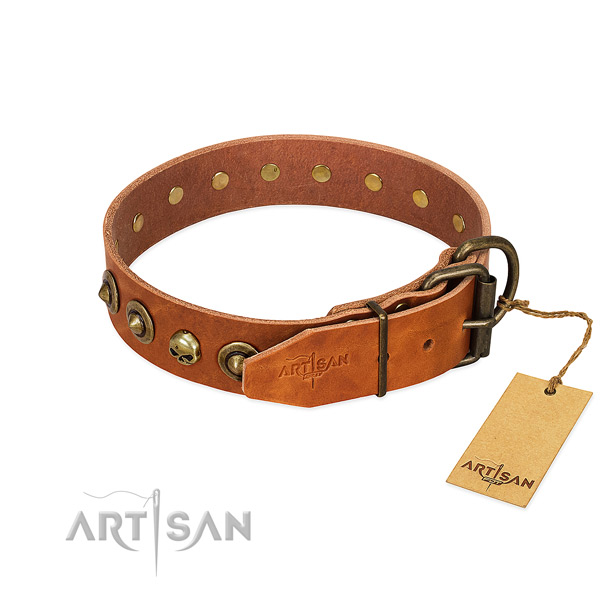 Full grain natural leather collar with significant embellishments for your dog