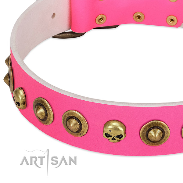 Top notch embellishments on natural leather collar for your dog