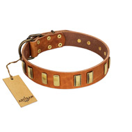 """Olive Slice"" FDT Artisan Tan Leather German Shepherd Collar with Engraved and Smooth Plates"