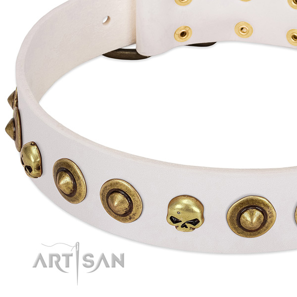 Incredible decorations on full grain genuine leather collar for your four-legged friend