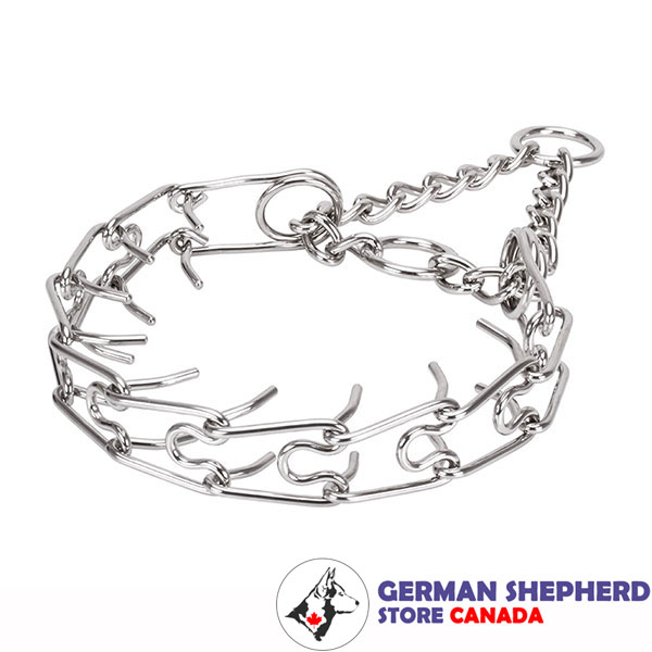 Dog pinch collar of strong stainless steel for large breeds