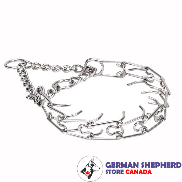Pinch collar of strong stainless steel for ill behaved dogs