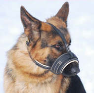 Best Royal Nappa Leather Dog Muzzle fit for German Shepherd