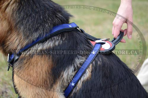 American Pride Painted Leather German Shepherd Harness with Strong Handle