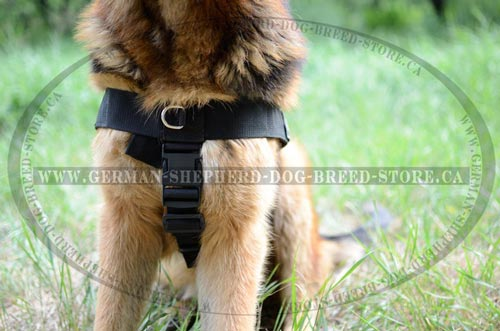 Nylon German Shepherd Harness with Front Metal Ring