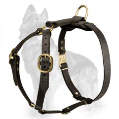 Strap-Like Leather German Shepherd Dog Harness With  Brass Fittings