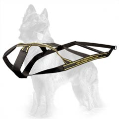 Complex Training For Your German Shepherd Dog With Our  Nylon Harness
