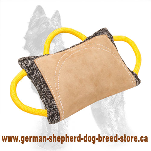 Advanced German Shepherd Bite Pad of French Linen and Leather